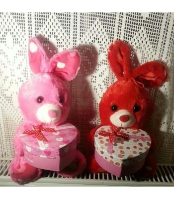 Kalpli Kutulu Tavşancık