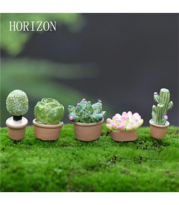 Minik Teraryum Bahçe Ürünleri
